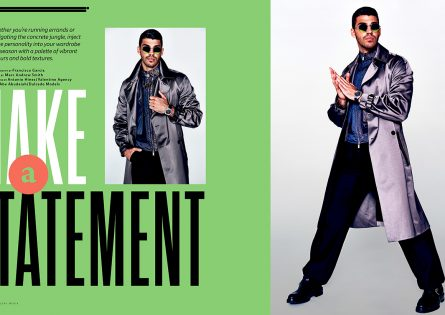 Make A Statement: Abe for Bay Street Bull